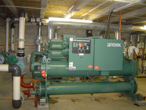 Commercial Plant installation